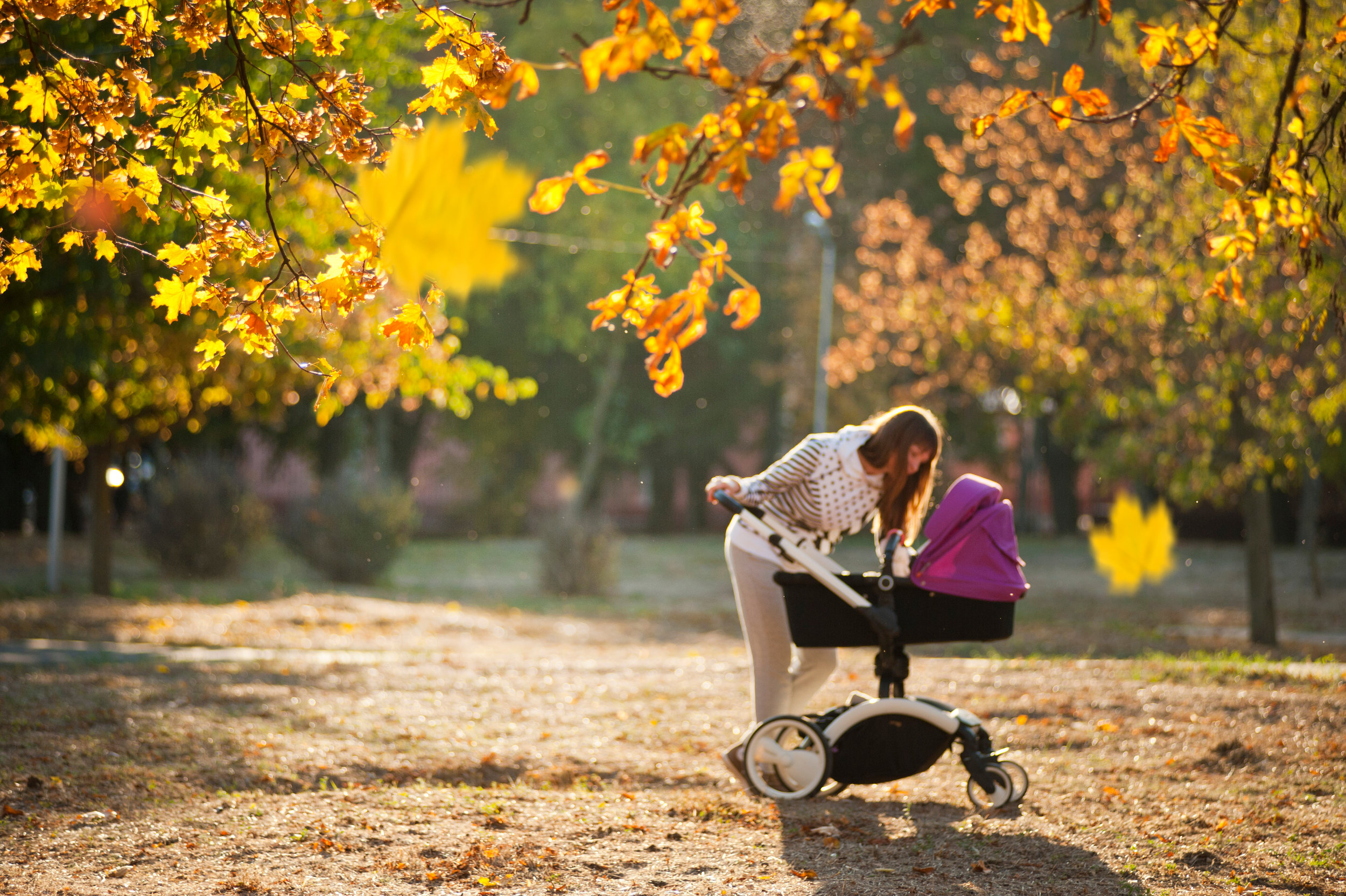 Canva - Woman In Grey Pants Holding Black And Purple Stroller .jpg