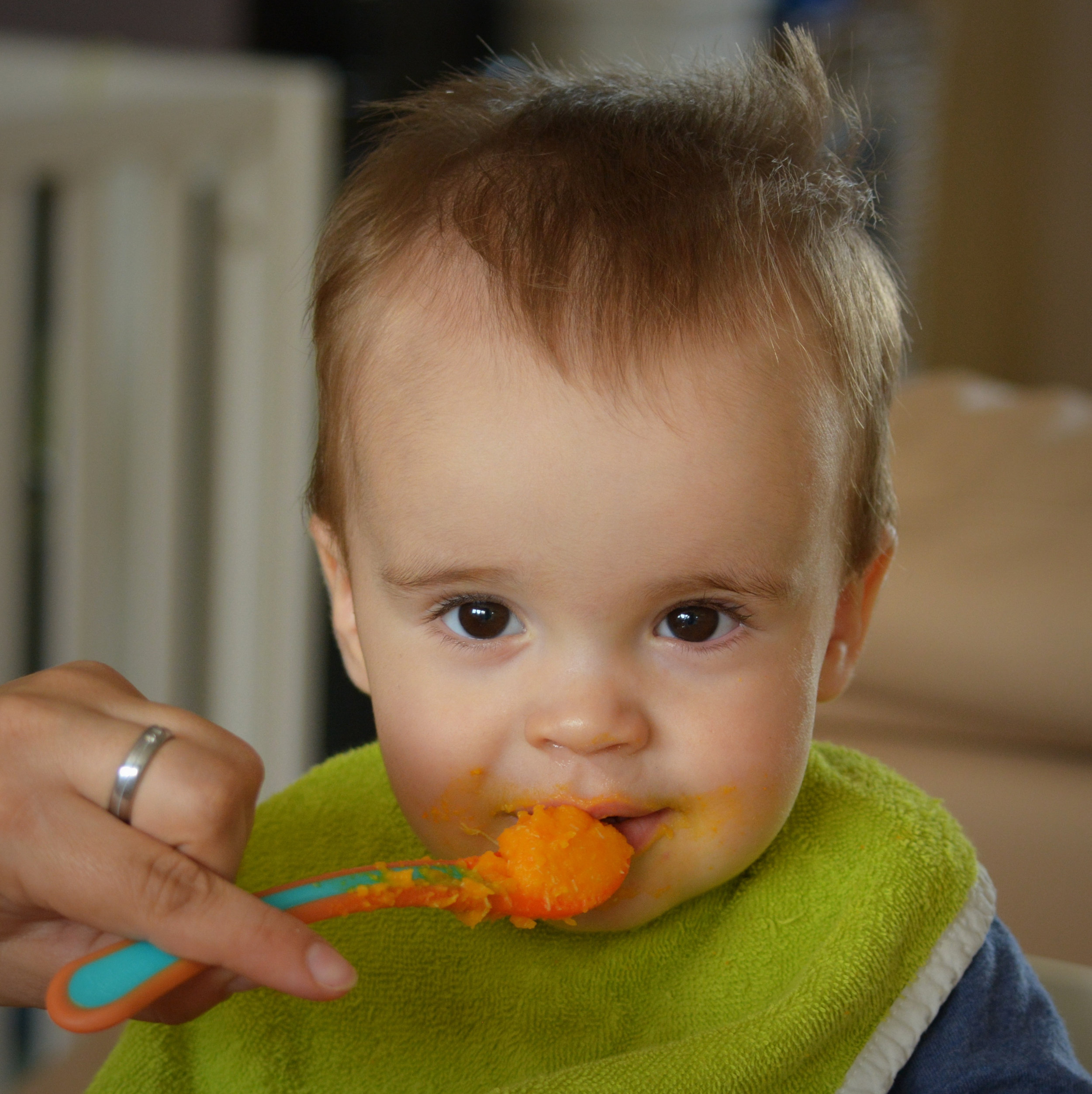 Canva - Child, Vegetable Pap, Power Supply, Baby, People, Food.jpg