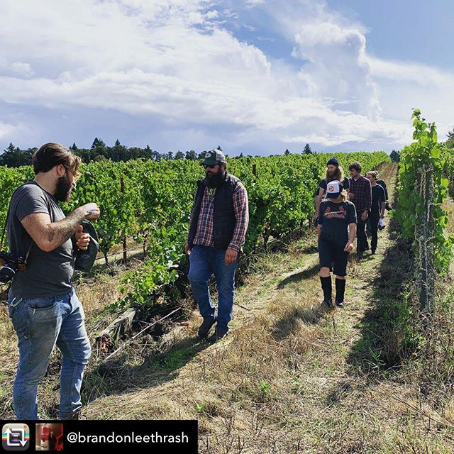 🙏Thanks for the nice words @brandonleethrash. We're so fortunate to work with the amazing group of winery partners that we do... and we value all of the relationships we've cultivated over the years. As we enter into our 15th vintage harvesting and selling fruit from this site, we appreciate every moment of it!! . Repost from @brandonleethrash - Vineyard visits are one of my favorite parts of harvest. It's the time when I feel most connected to the fruit and the farmers who grow it.  Johan Vineyards is especially close to my heart. It's not only, beautiful, bio-dynamic, and farmed honestly and with intent, but is worked by some of my favorite humans in the country.  I strongly believe that you can feel and taste the care and love that the team at Johan gives to their fruit. Morgan Beck, Dan Rinke, Dag Sundby, Jack Tregenza, Ian Nelson, and the rest of the Johan team bring an eclectic and bountiful amount of knowledge and care to their farming practices and winemaking.  Most importantly, they're my friends and they're some of the funniest people I've ever had the pleasure to spend time with. Know your farmers, drink more fruit.  @johanvineyards @art_science_cider_wine  @zibibbo_baby @ianunderscorenelson @maloofwines