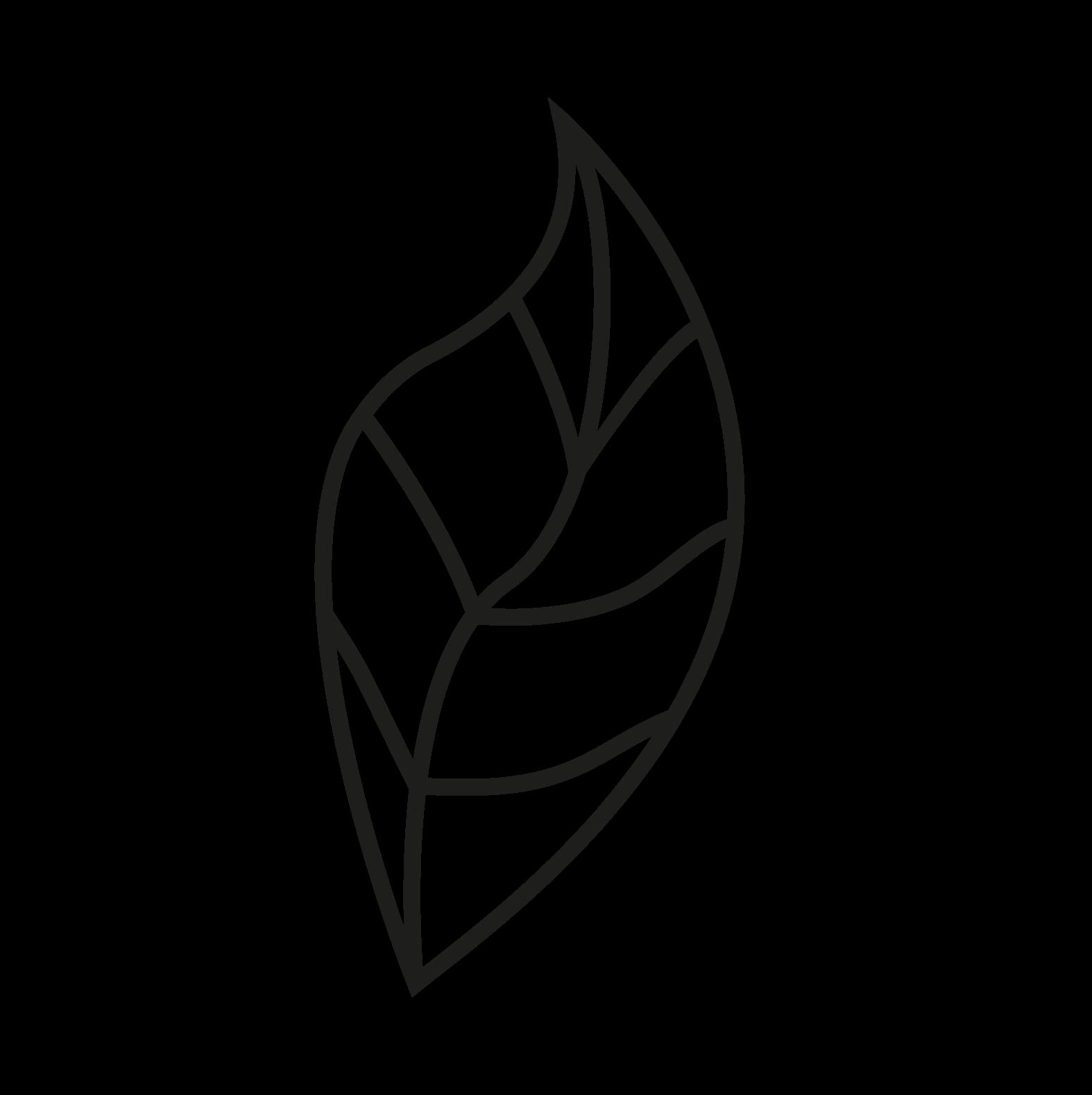logo-vitality-leaf-black.png