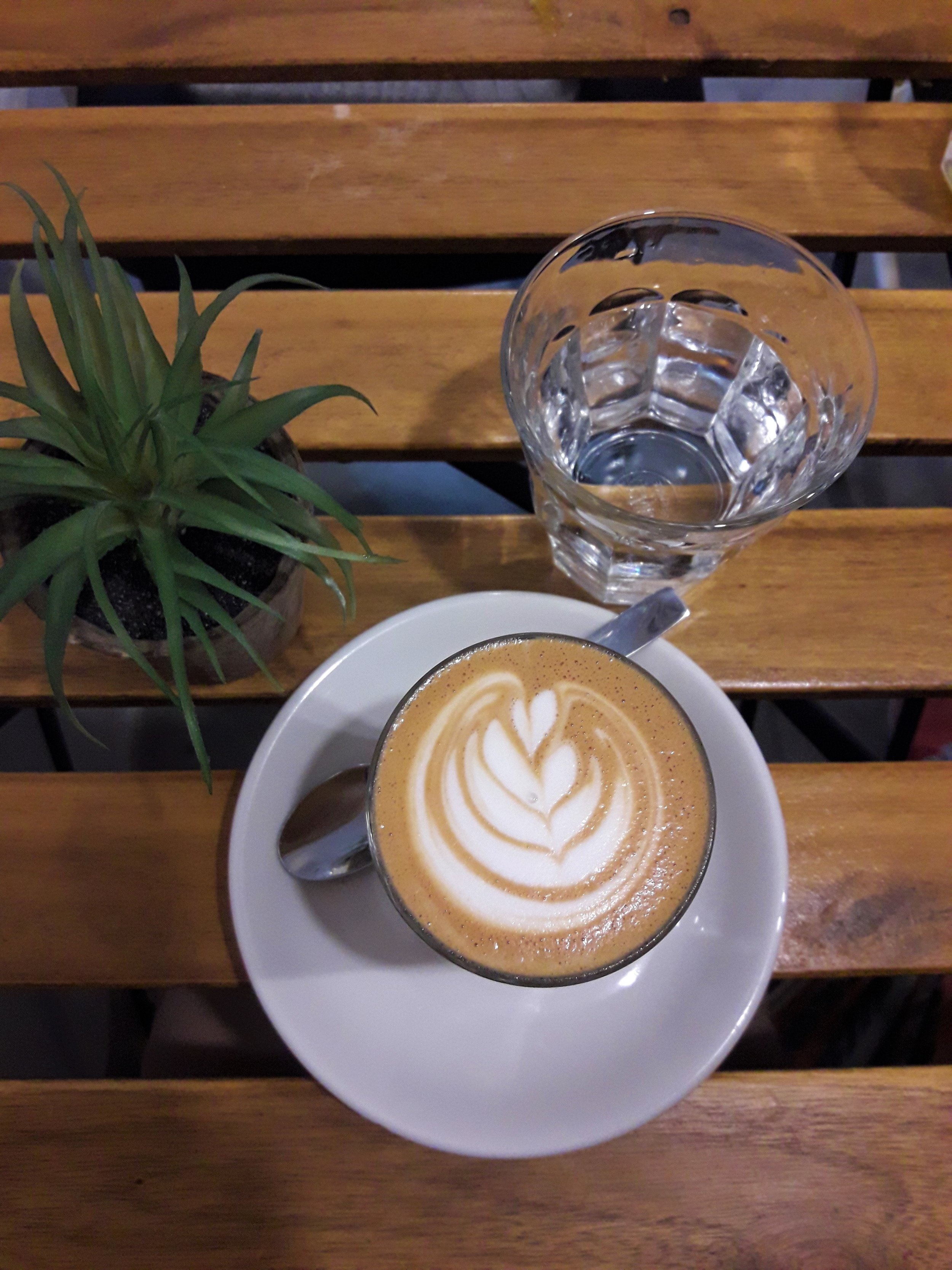Flat White-Kaffee-Pflanze-Wasser.jpg