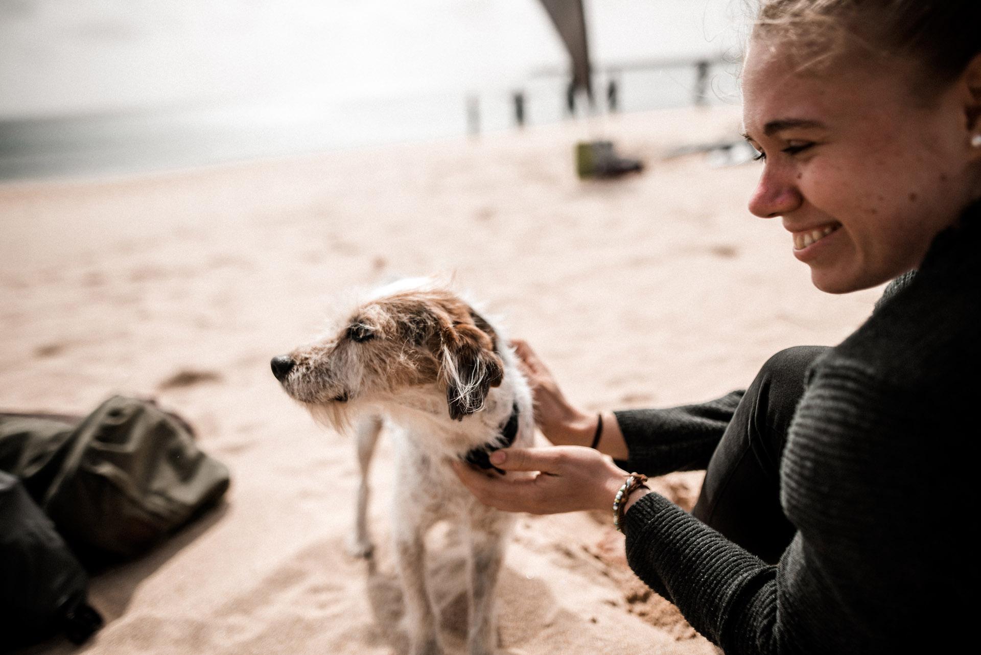 Hund-Strand-Portugal.jpg
