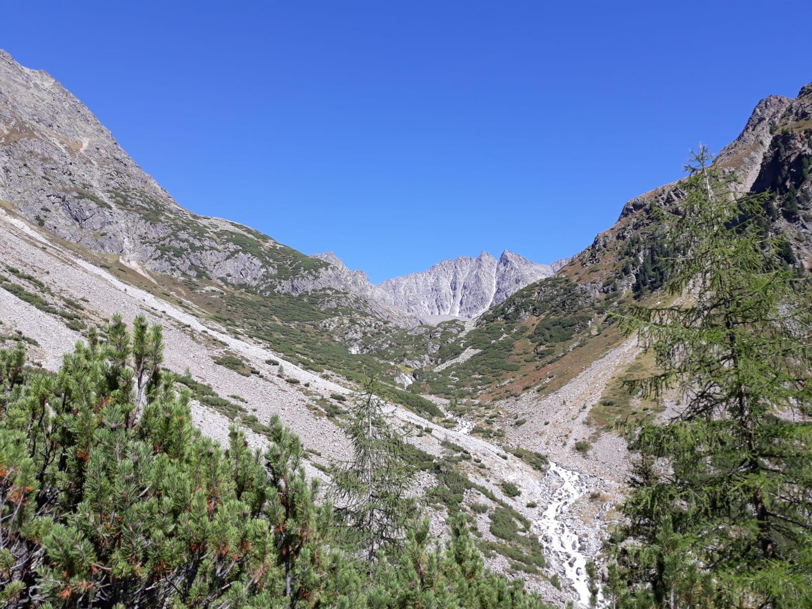 blauer Himmerl, Bäume, Berge.jpg