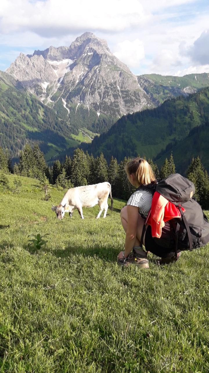 Alm, Wiese, Kuh, Wanderer, Berge.jpg