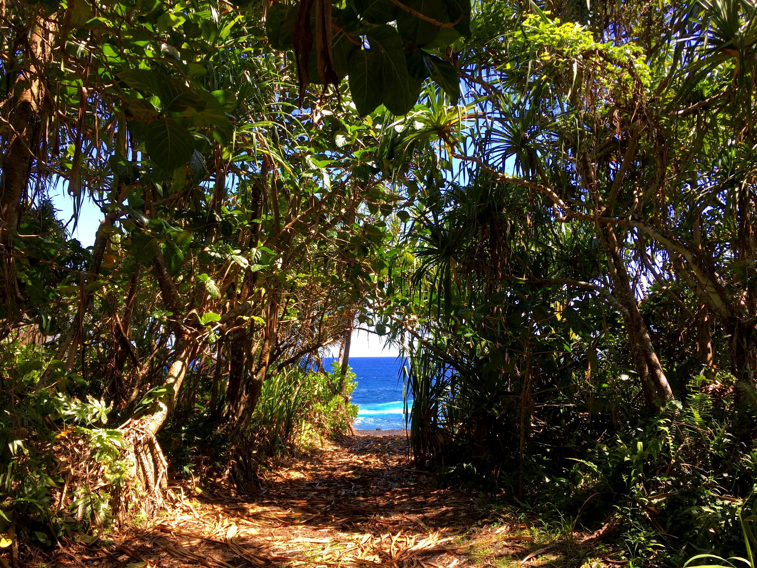 GATEWAY TO THE OCEAN, HAWAII