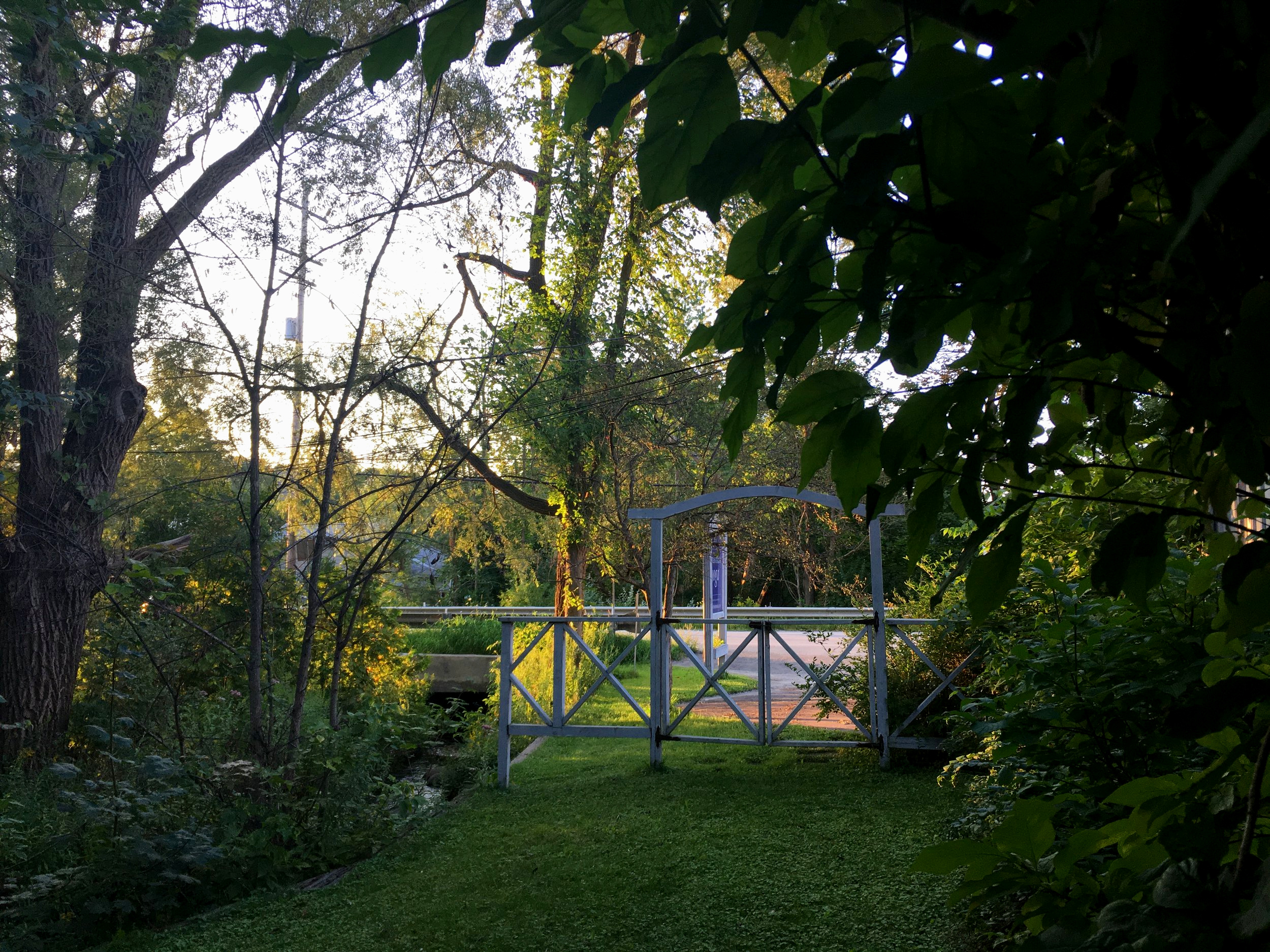 VIEW FROM SIDE GARDEN TO OUR LOT HERE AT INTENTIONS, where we host outdoor offerings in our backyard