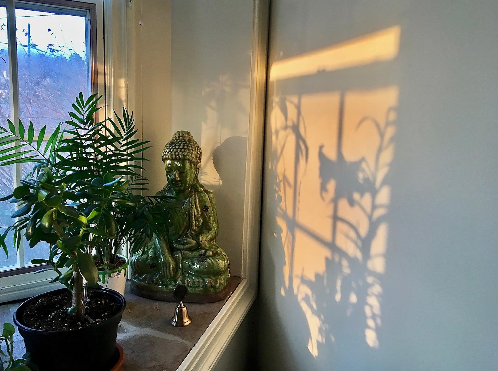 Buddha Window.jpg
