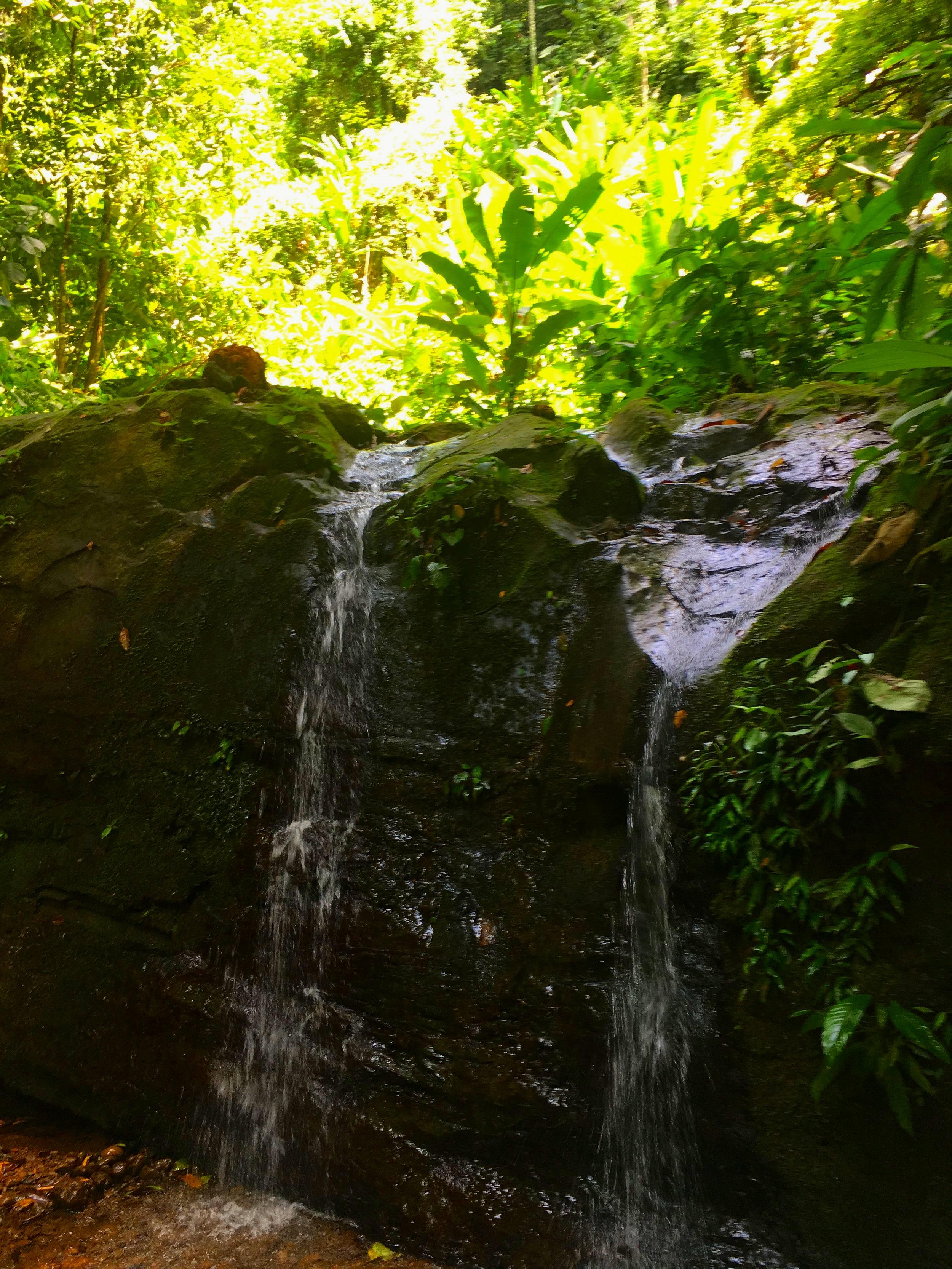 LIFE GIVING WATERFALL AT SAMASATI RAIN FOREST SANCTUARY, COSTA RICA