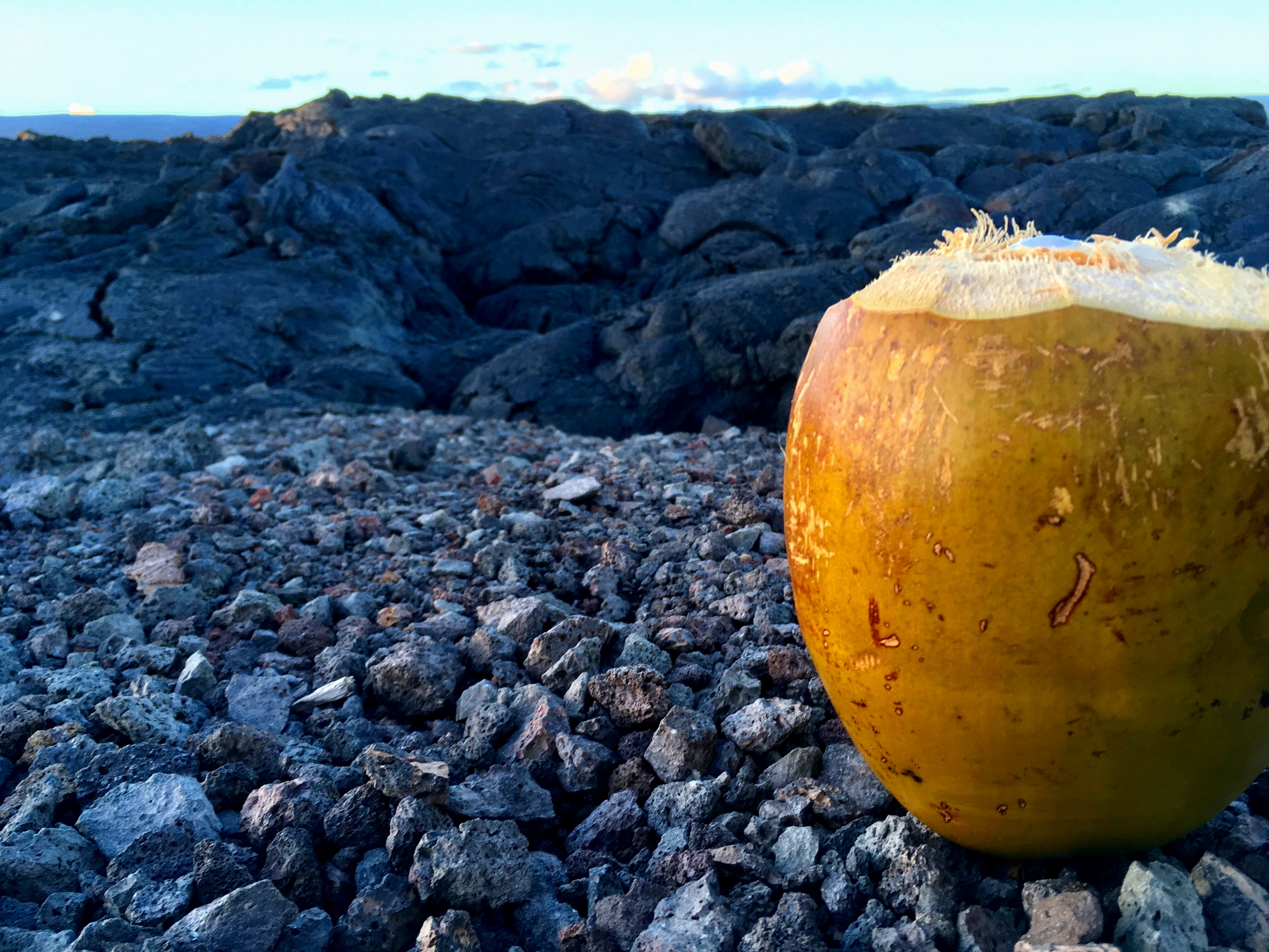 HAND PICKED COCO   HYDRATION FOR THE HIKE