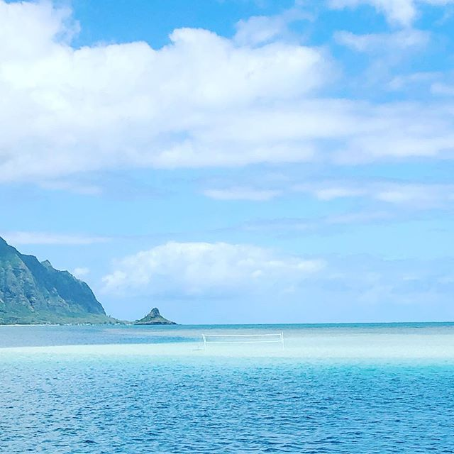 Who wants to play beach volleyball in the middle of the ocean?🏝🏐 . . . #hawaii #aloha #hawaiitrip #hapatravelhawaii #vacation #beachvolleyball #sandbar #travelplanner #アロハ #ハワイ #ハワイ旅行 #ビーチバレー