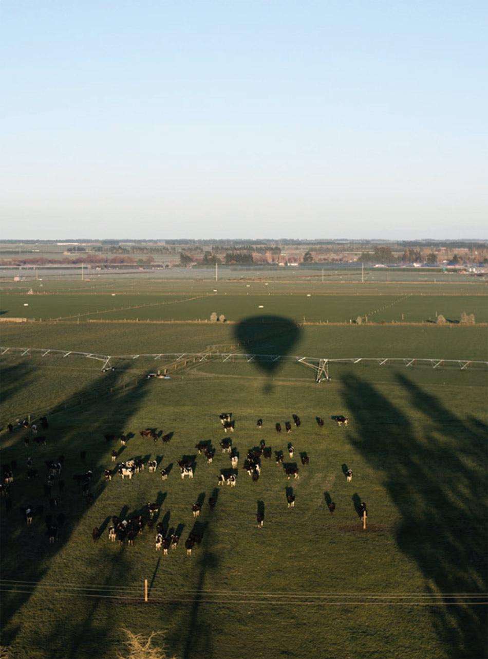 Ballooning-2.jpg