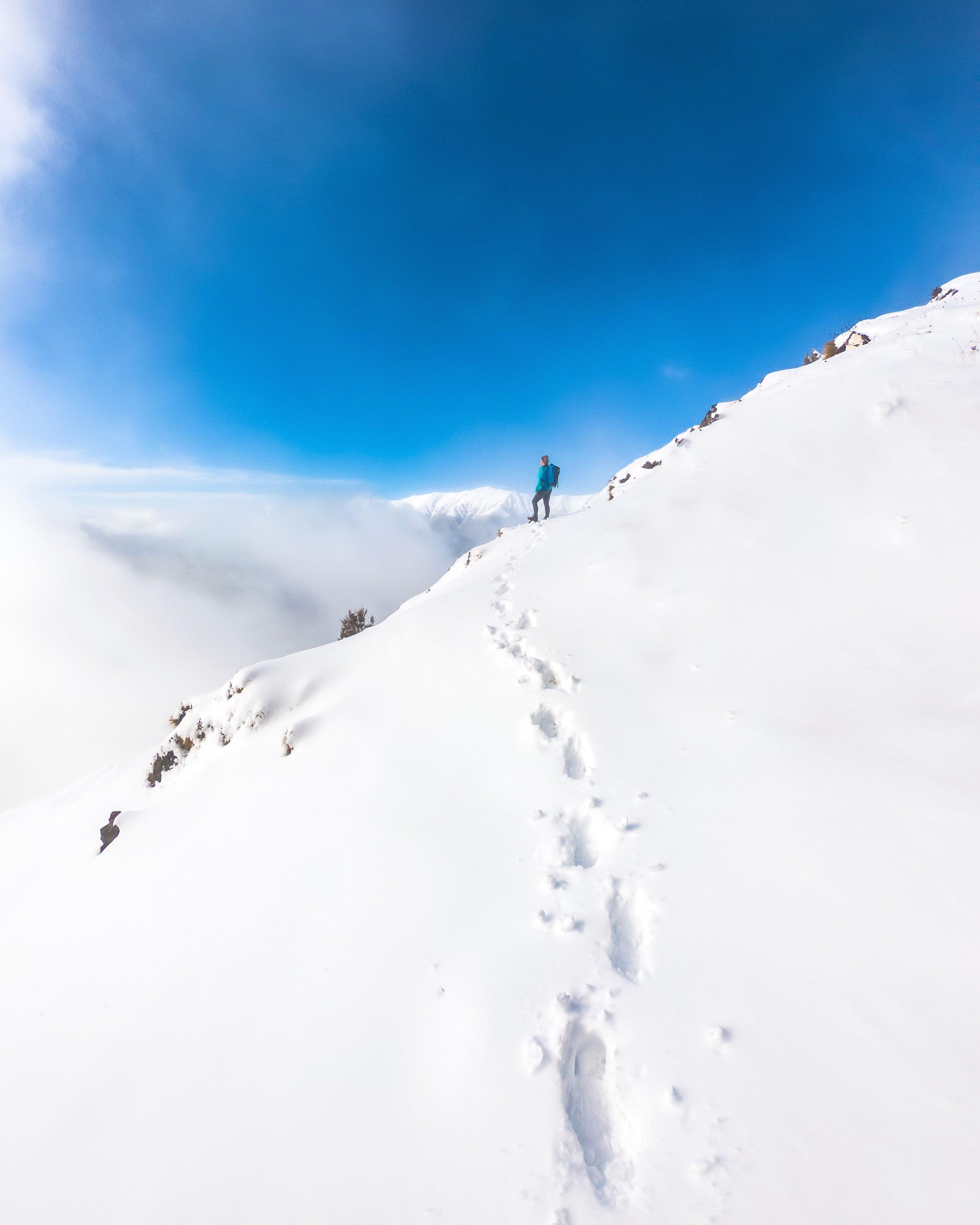 Mount_Robert.JPG
