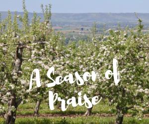 A Season of Praise.png