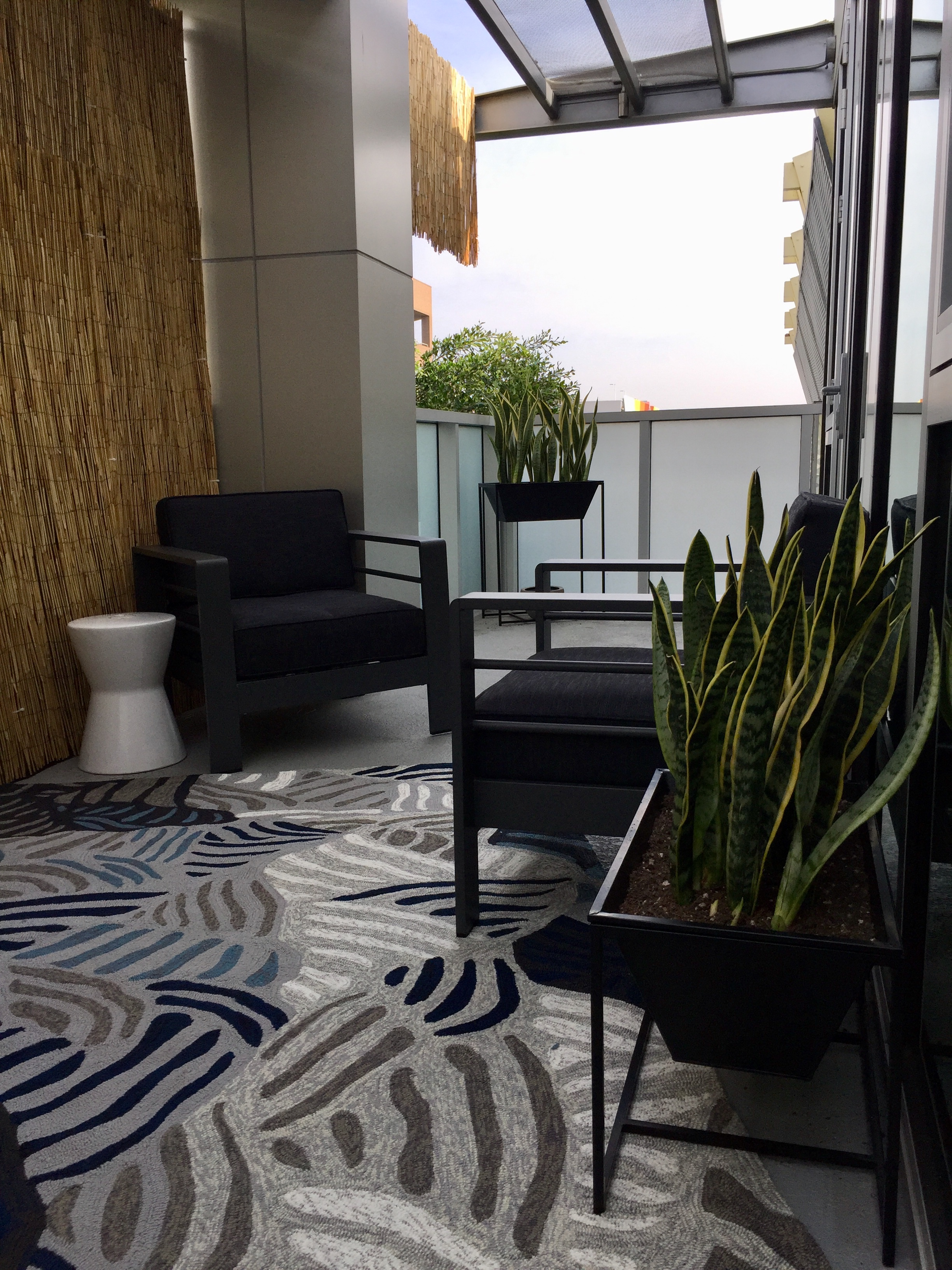 Snake tongue plants are very easy care and stay green all year round in LA, making them a perfect choice for this client's planting needs. They also make a strong statement in keeping with this bachelor's modern aesthetic.