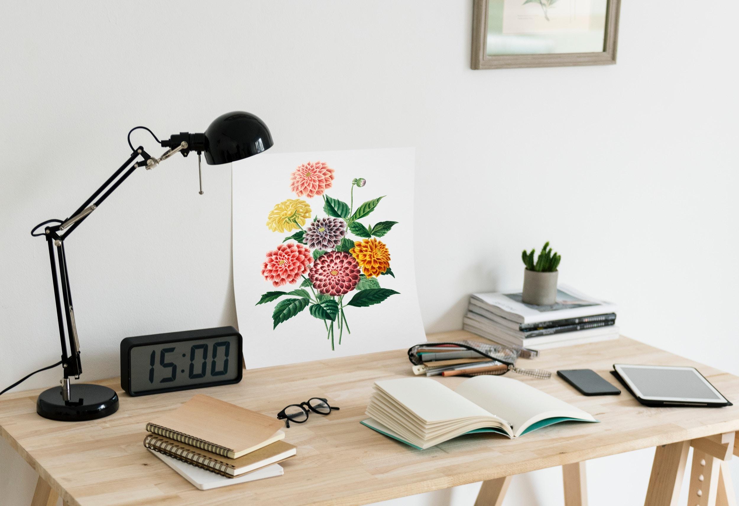 Study blogs -