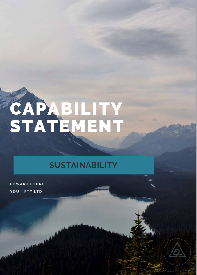 Capability statement -