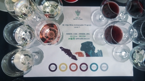 The Line Up at the BCWI Wine Ambassador Education Day