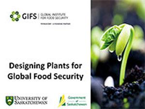 presentation-2016-Designing-Crops-for-Global-Food-Security.jpg