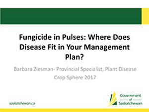 presentation-2017-Barb-Ziesman-Fungicide-Pulses.jpg