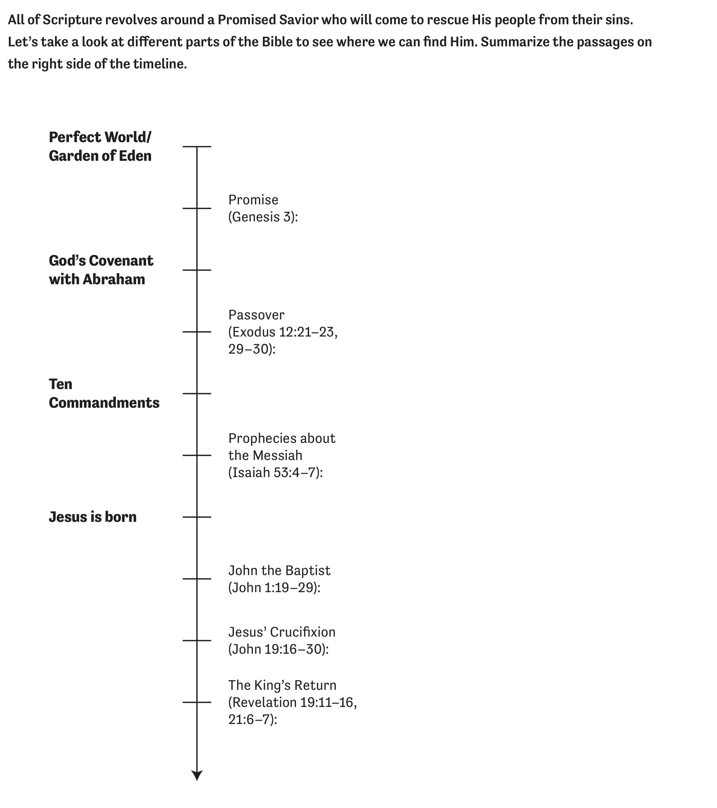 Bold-Timeline.jpg
