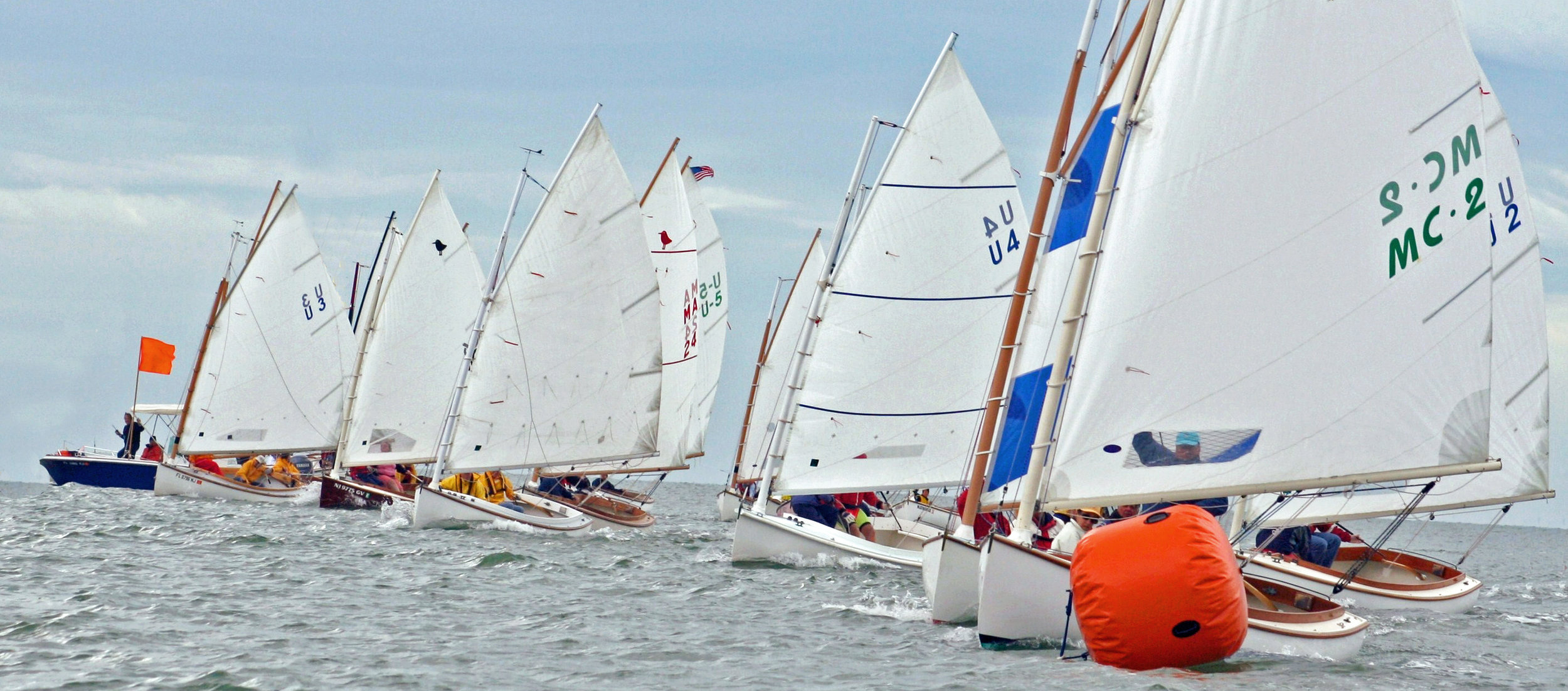 Sandpipers racing 2.jpg