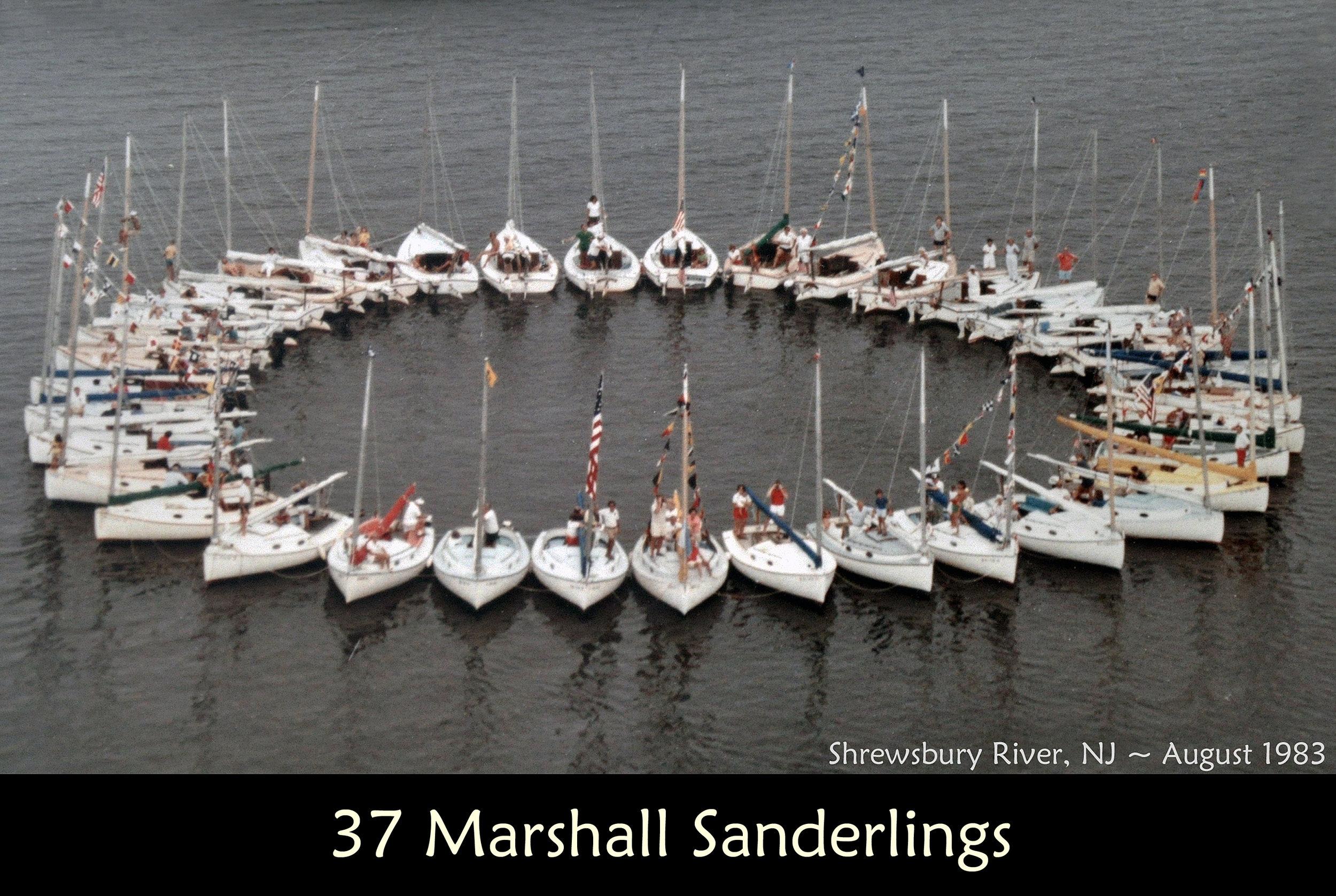 37 Marshall Sanderlings.jpg