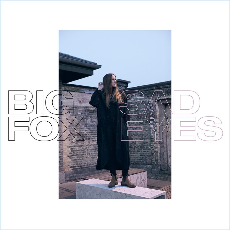 BigFox-SadEyes-webbram.jpg