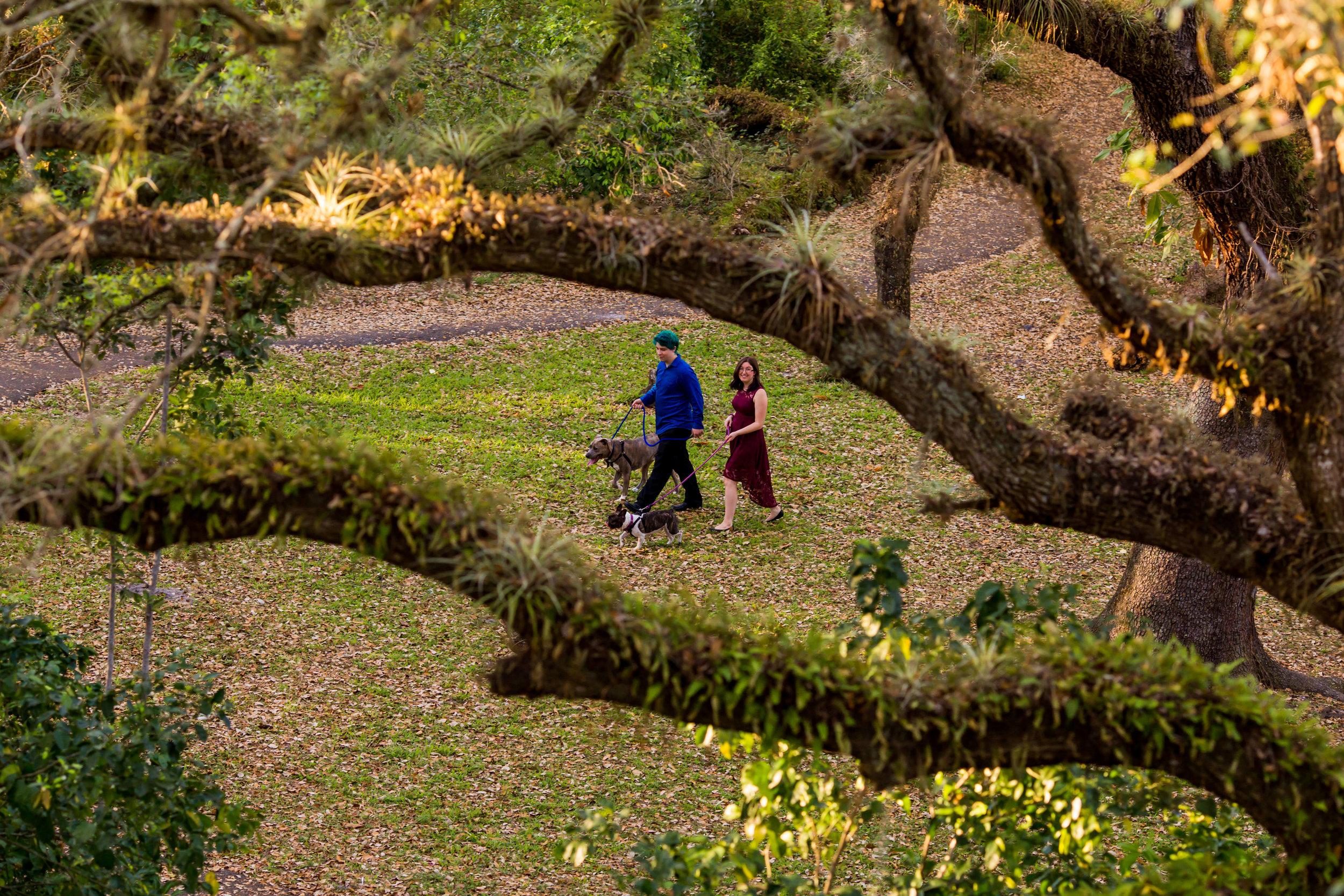 davie-tree-tops-park-engagement-photos-td-280.jpg