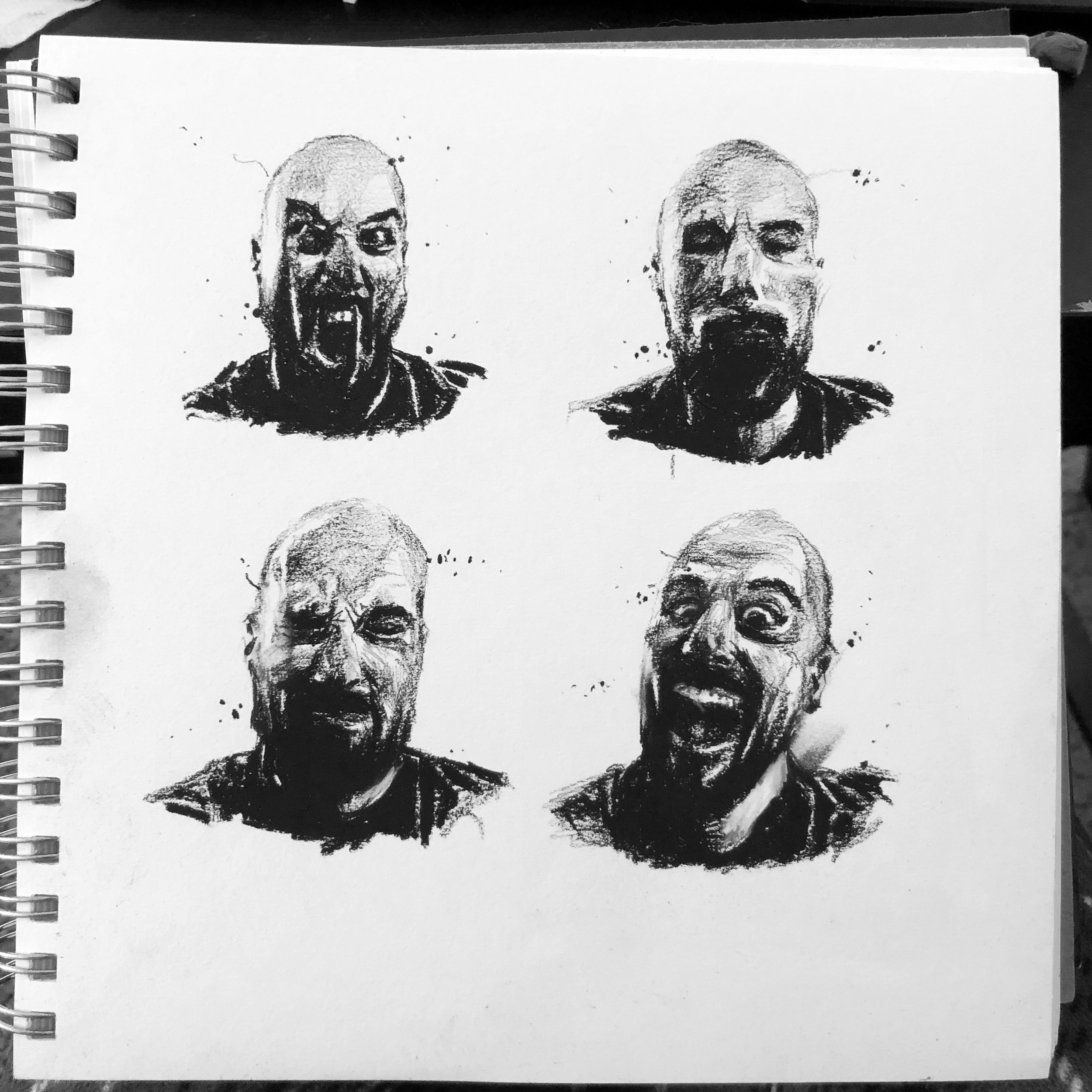 facial expressions - As a training artist I think it's easy to fall into a (to me) bad habit of practicing only cliché, standard facial expressions when practicing portraiture. So I often try to choose unusual expressions to render when I practice this.