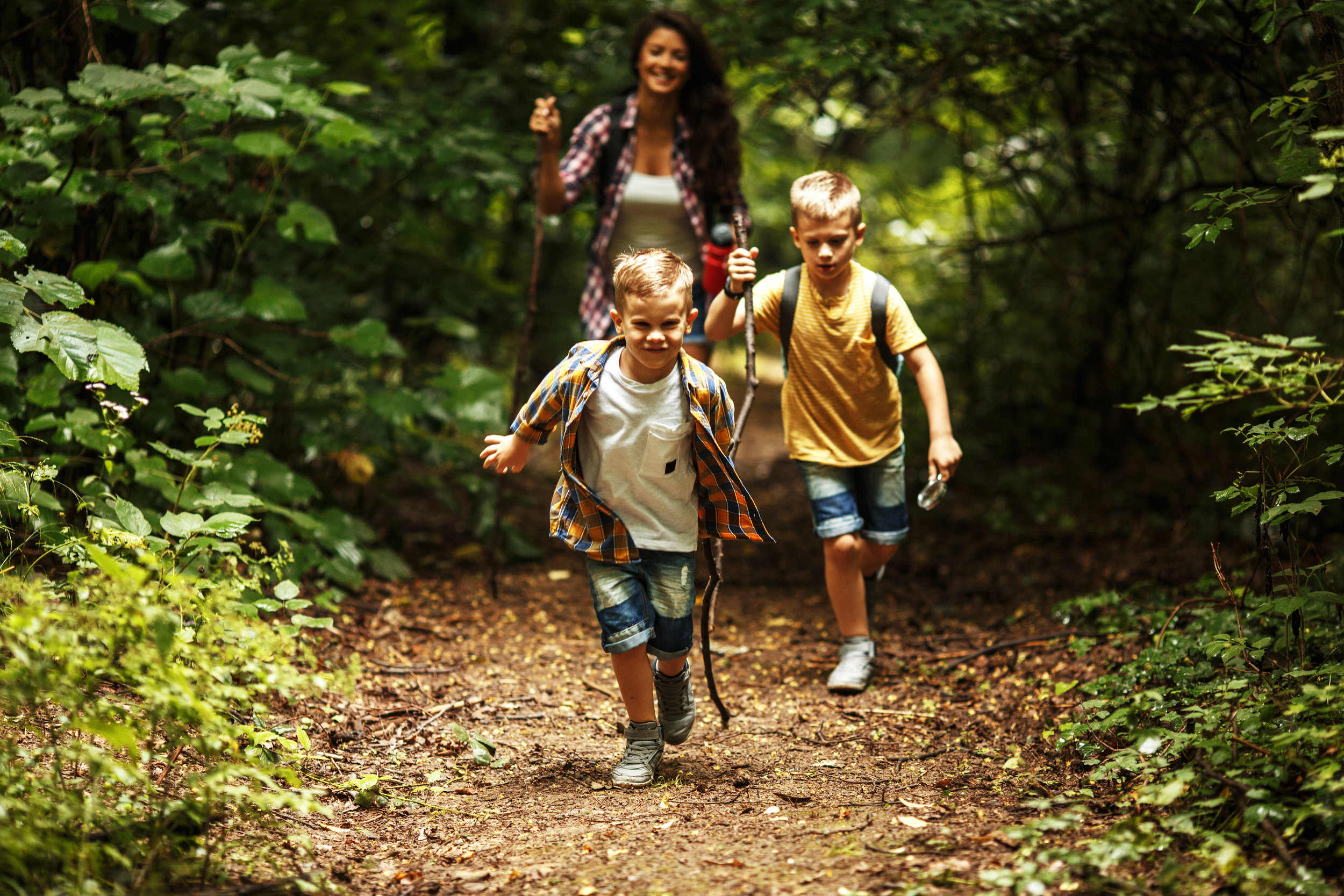 Hiking trails are easy and for the whole family