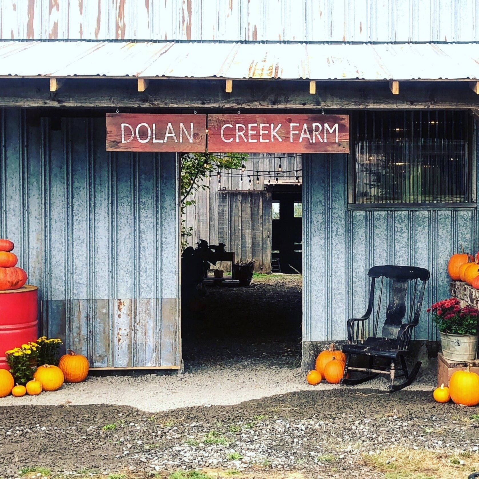 Pumpkin Patch - Fri/Sat/Sunthrough October10-5 p.m.$5 per car