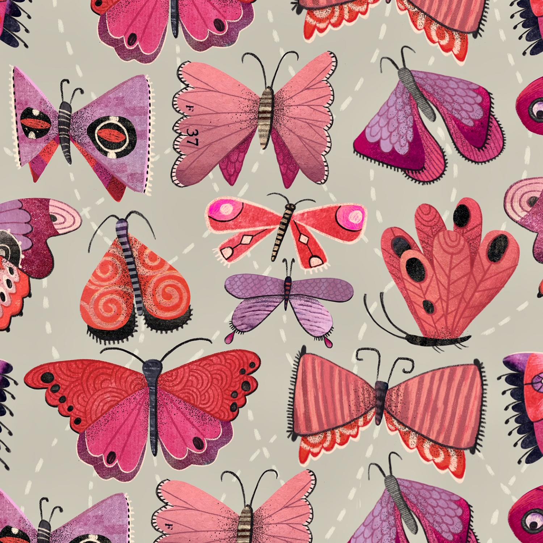 Butterflied II