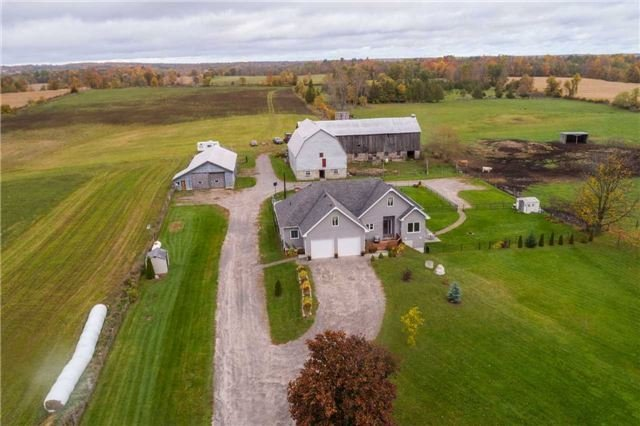 100 Acre working cattle farm in Trent Hills.  SOLD