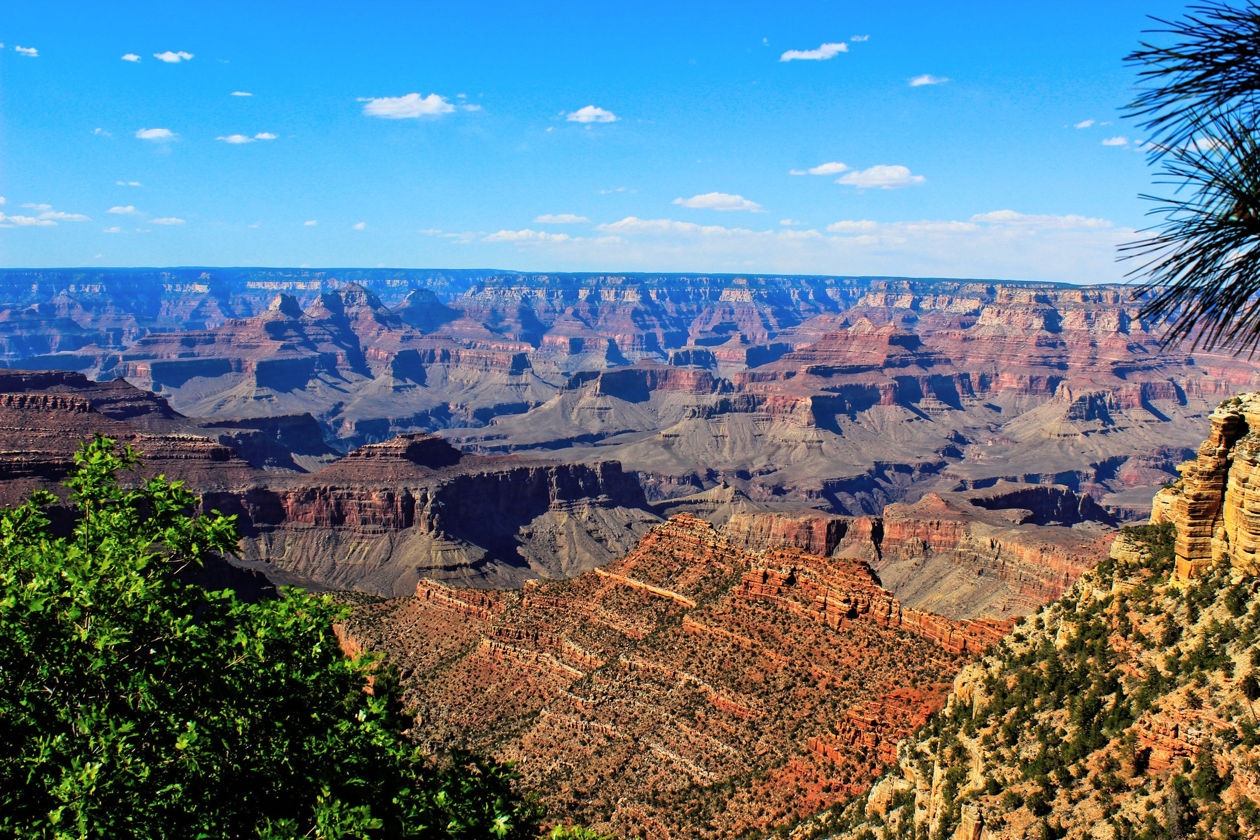Looking out from the South Rim.