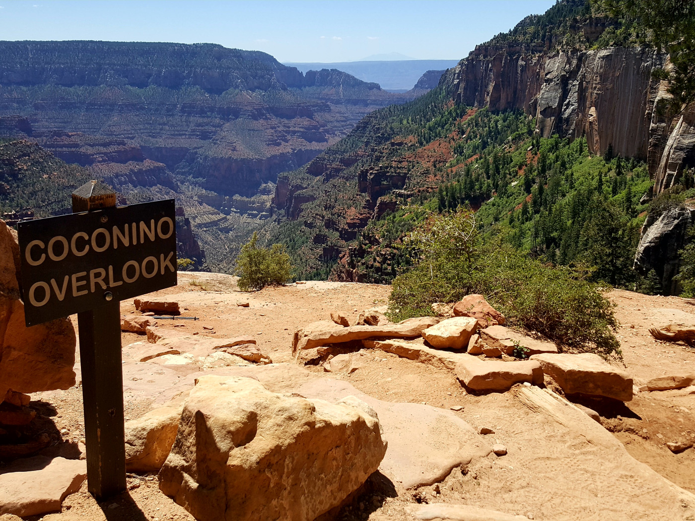 Coconino overlook, near the top of north kaibab trail. almost there!!