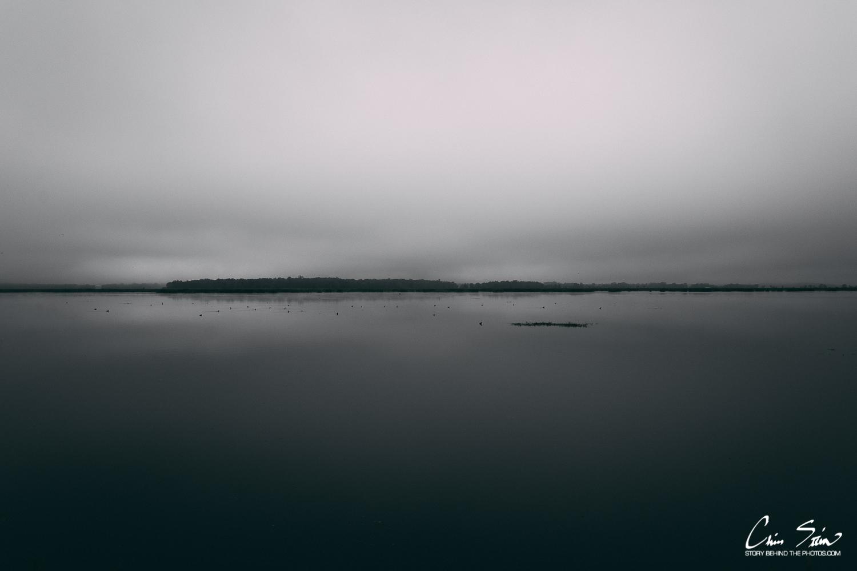 Marsh2018.jpg