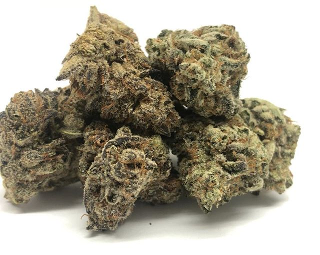 fresh in * cookie breath * delicious Strain for a lazy Sunday get your extra free gram on top of any eight #sundayfunday #bestintown #pasadena #pasadena419 #weed🍁 #weed #weedmaps #weedporn