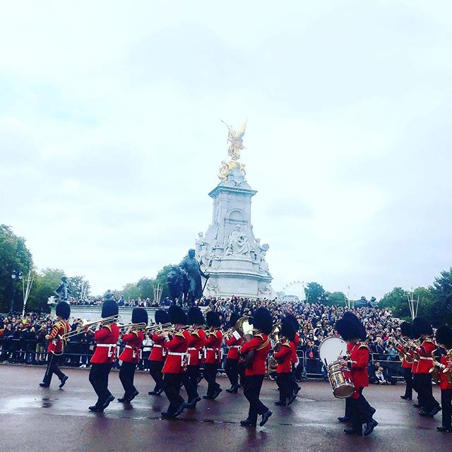 London adventures ... Tower of london Kew gardens  Deers galore in Richmond Park  Hamleys and Harrods  Trafalgar Square  Walking, walking and more walking. Loving being back in the buzz of it all 💓