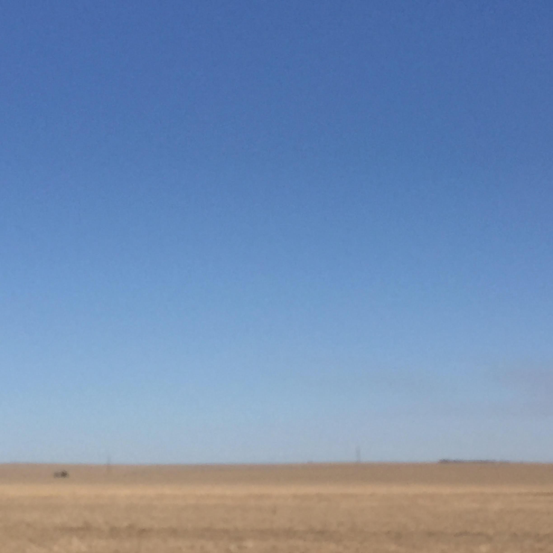 The Wheatbelt, near Buntine, WA