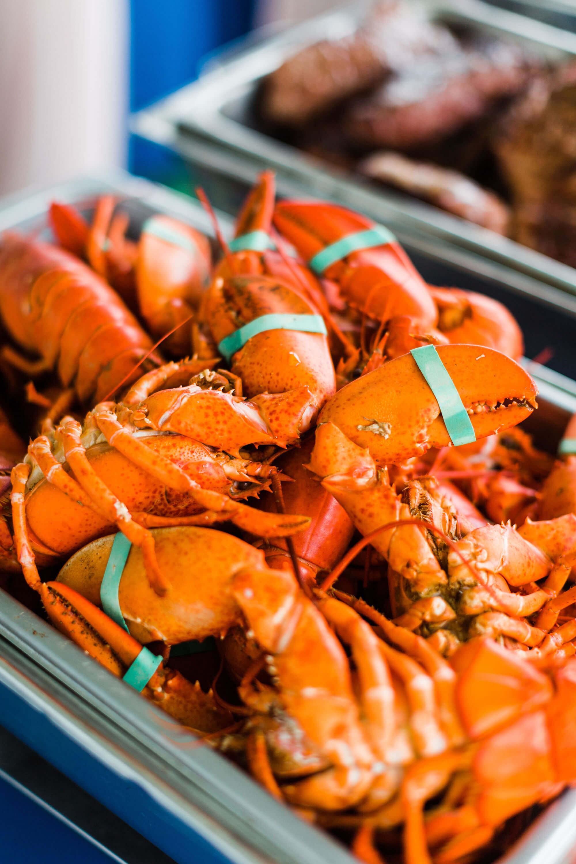 lobster-bake-coastal-maine-wedding.jpg