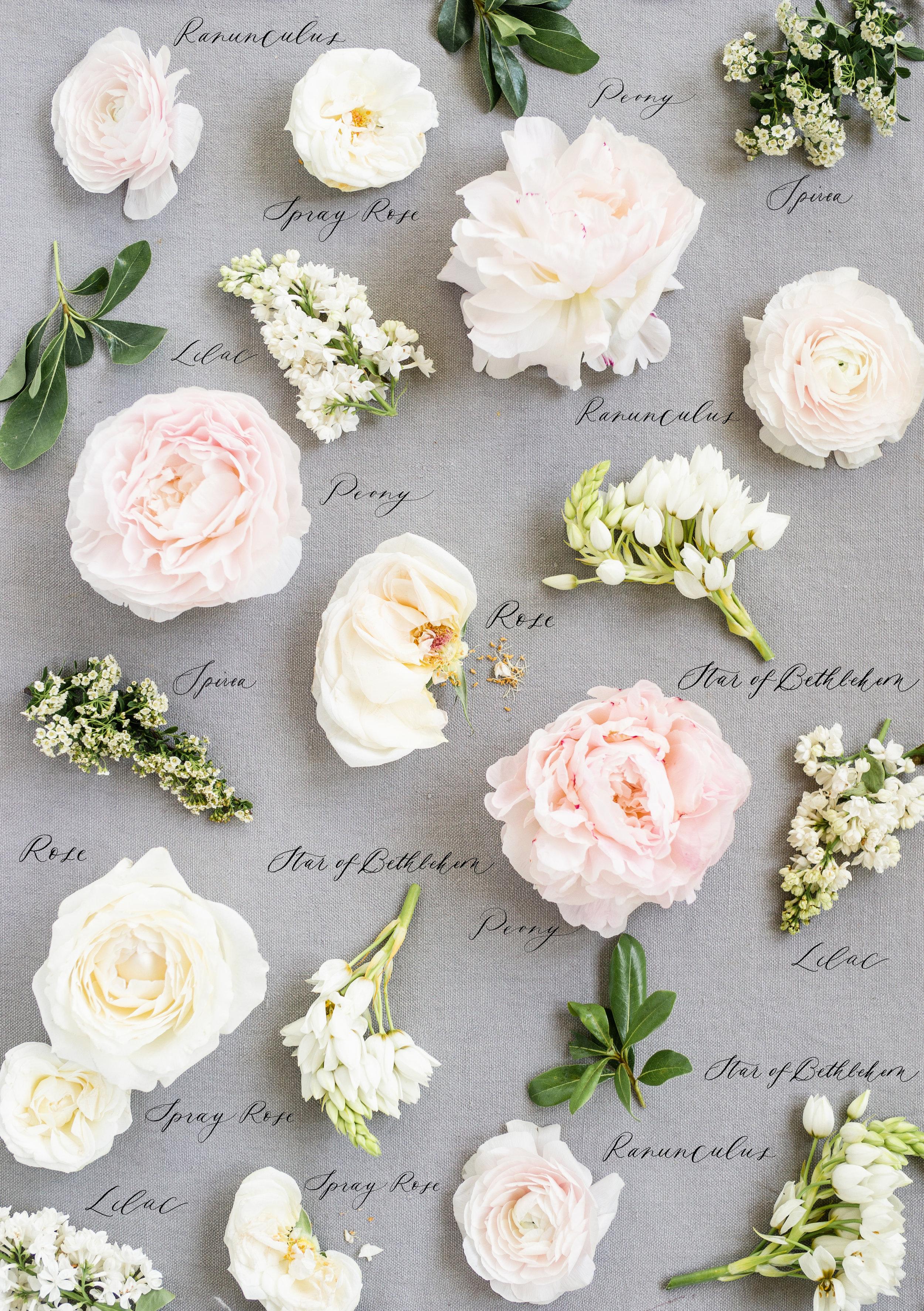 Image Courtesy of Jaimee Morse of Heirloom Bouquet