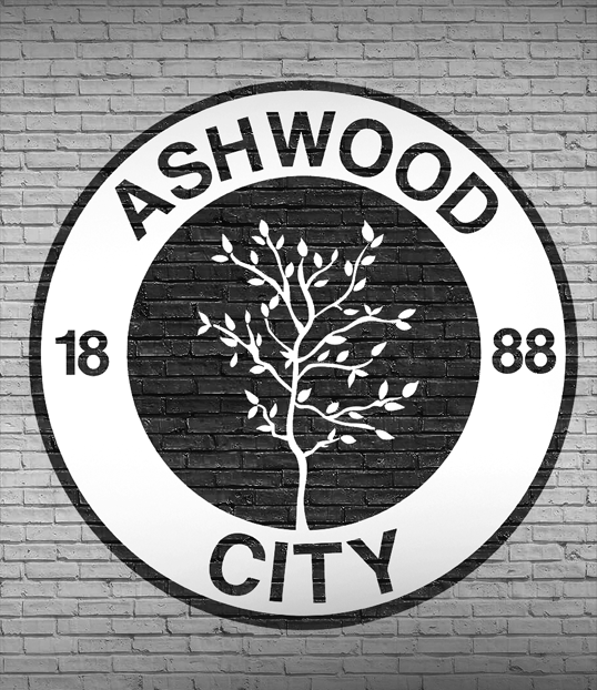 'THE OFFENSIVE' - In 2017, after a lengthy negotiation process the club was acquired by American business consortium; Anaheim Sports Group.The owner, Hutch Lewis beguiled Ashwood supporters with a promise of an era he called 'The Offensive' which would involve player recruitment, a refreshing attacking ethos and full redevelopment of the facilities.Despite the new ownership and finances, the control of the club remains in the hands of Chief-Executive: Patrick Nolan