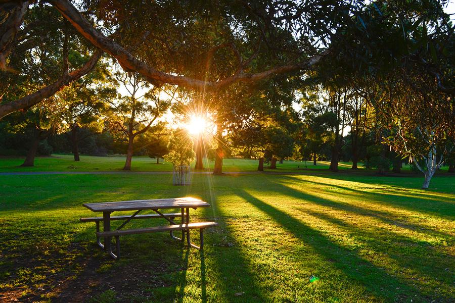 Beaumont Location_Hyde Park.jpg