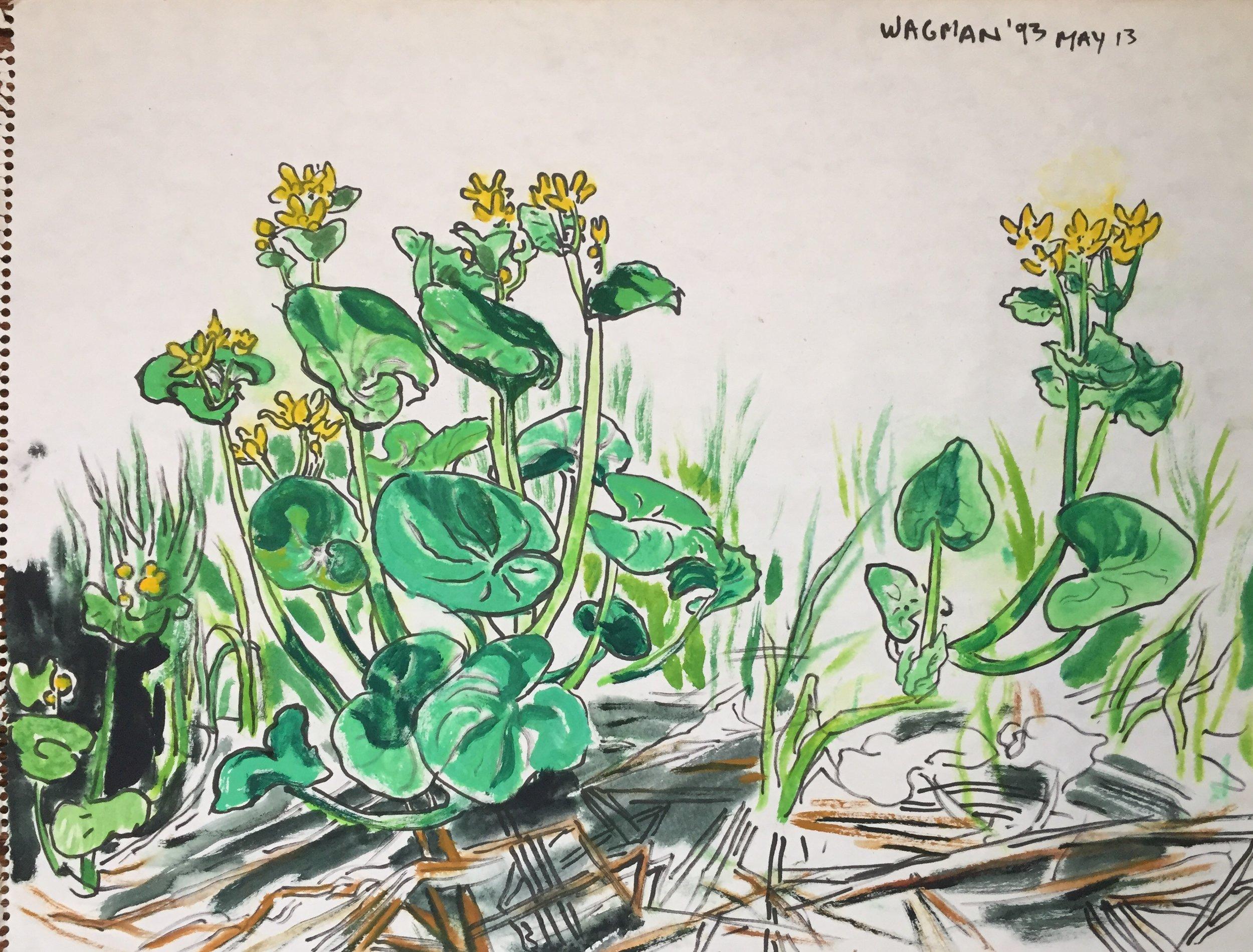 "lorne wagman - Mixed media on paper,18""x23.5""1993unframed"