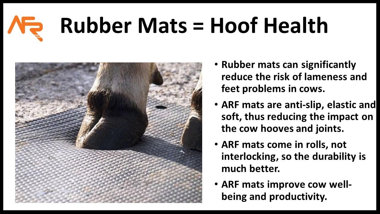 Hoof Health post.jpg