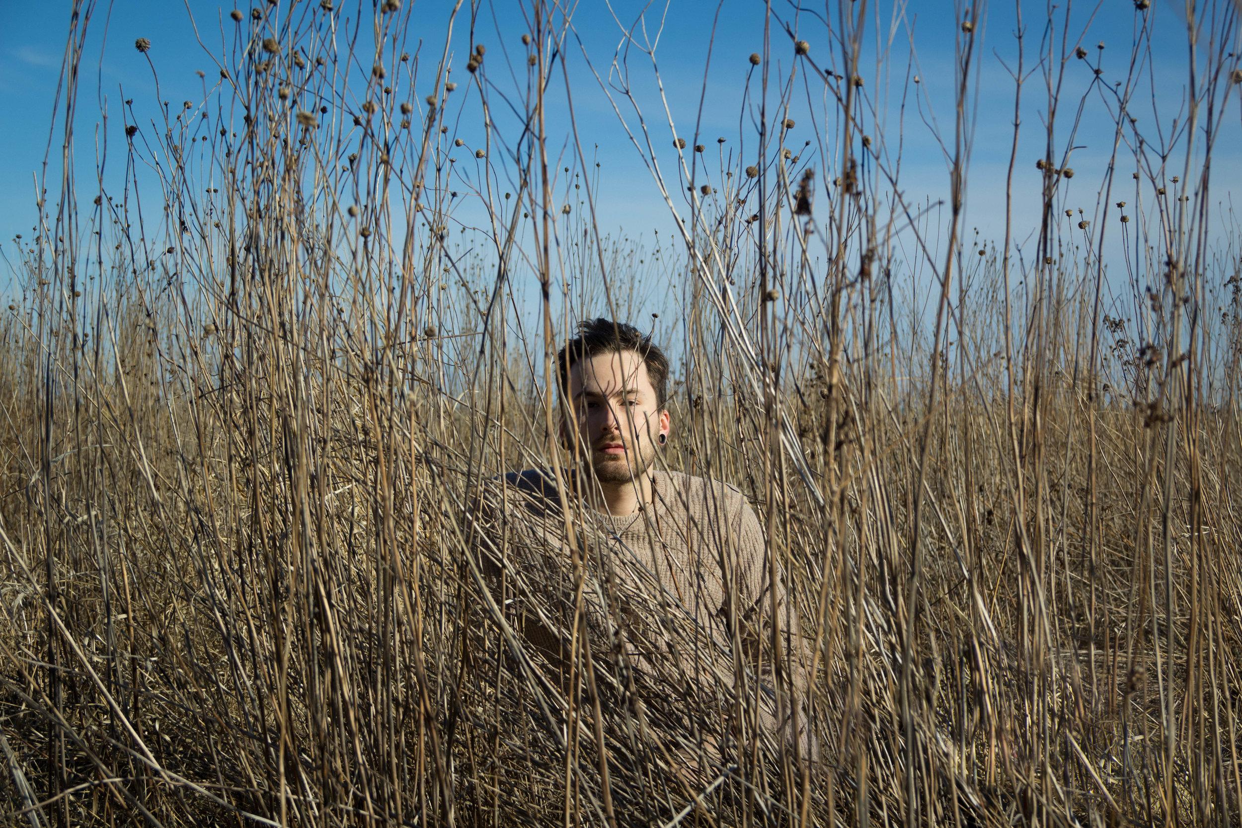 Blending in Prairie Grass , 2018