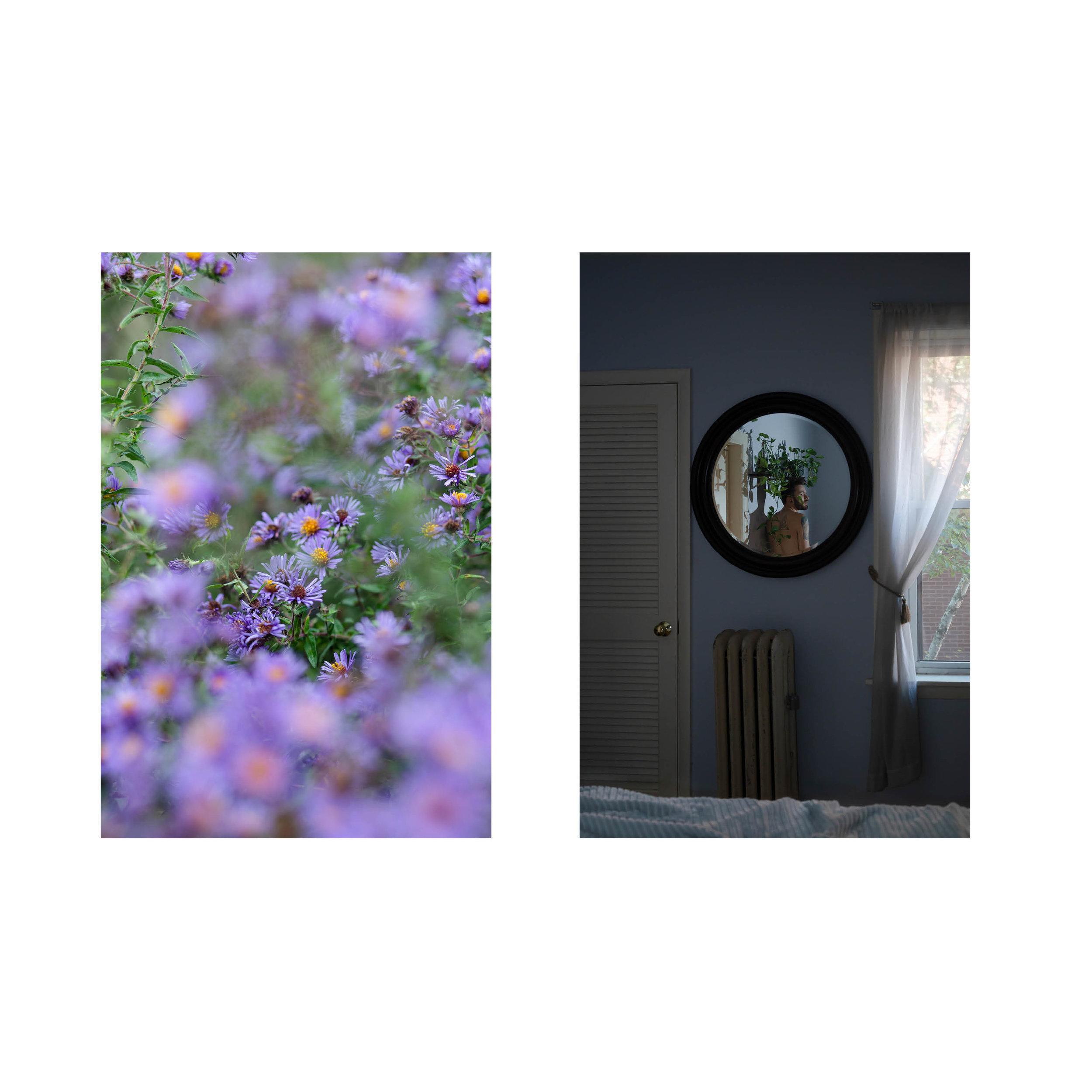 Left:  Purple Flowers, 2018  Right:  Kenneth in Mirror, 2018