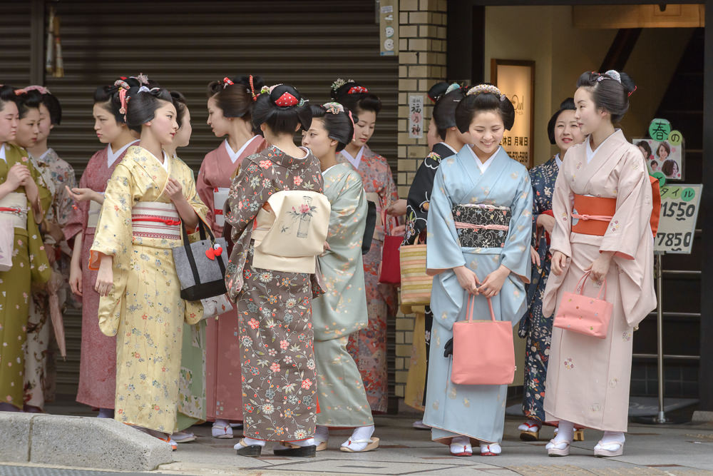 The maiko of Gion Kobu on their way to Yasaka Shrine
