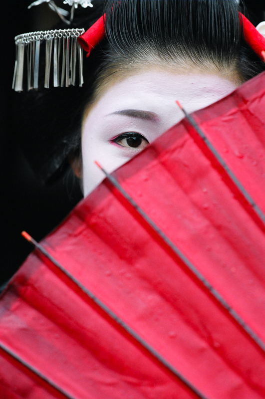 A tighter version of the cover of Geisha and Maiko of Kyoto