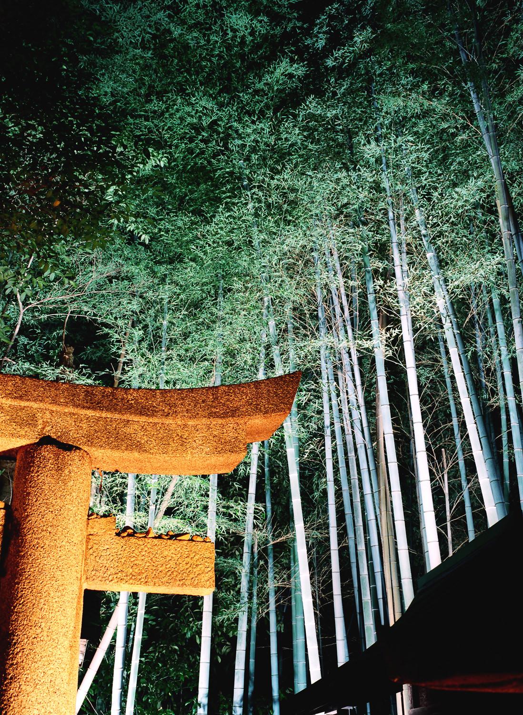 100-Views-Kyoto-47.jpg